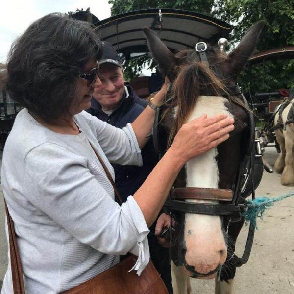 Carleeta patting a horse that has a cart behind it, near Blarney Castle in Ireland.